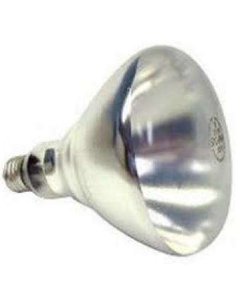 Ampoule 250W avec Enduit Protecteur